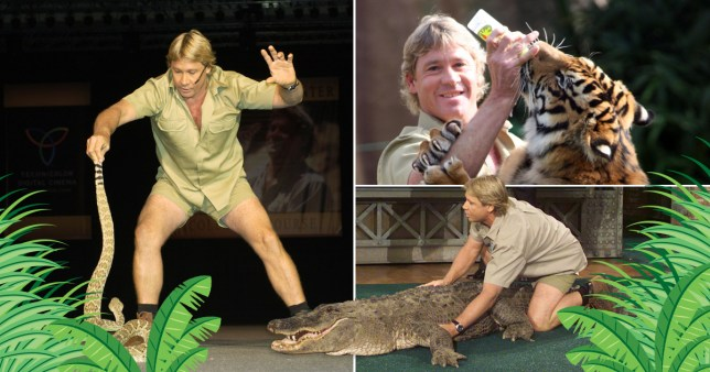 Steve Irwin would have turned 55 today Credit; Getty Images