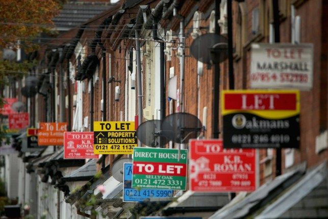 BIRMINGHAM, UNITED KINGDOM - OCTOBER 14: An array of To Let and For Sale signs protrude from houses in the Selly Oak area of Birmingham on October 14, 2014 in Birmingham, United Kingdom. The ONS (Office for National Statistics) have released details of it's findings showing the north-south divide in house prices is the biggest in history. nProperties in the London area are nearly 3.5 times more expensive than homes in the north-east of England. (Photo by Christopher Furlong/Getty Images)