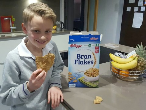 Dad finds massive Bran Flake in his cereal and plans to put it on eBay for £1,000