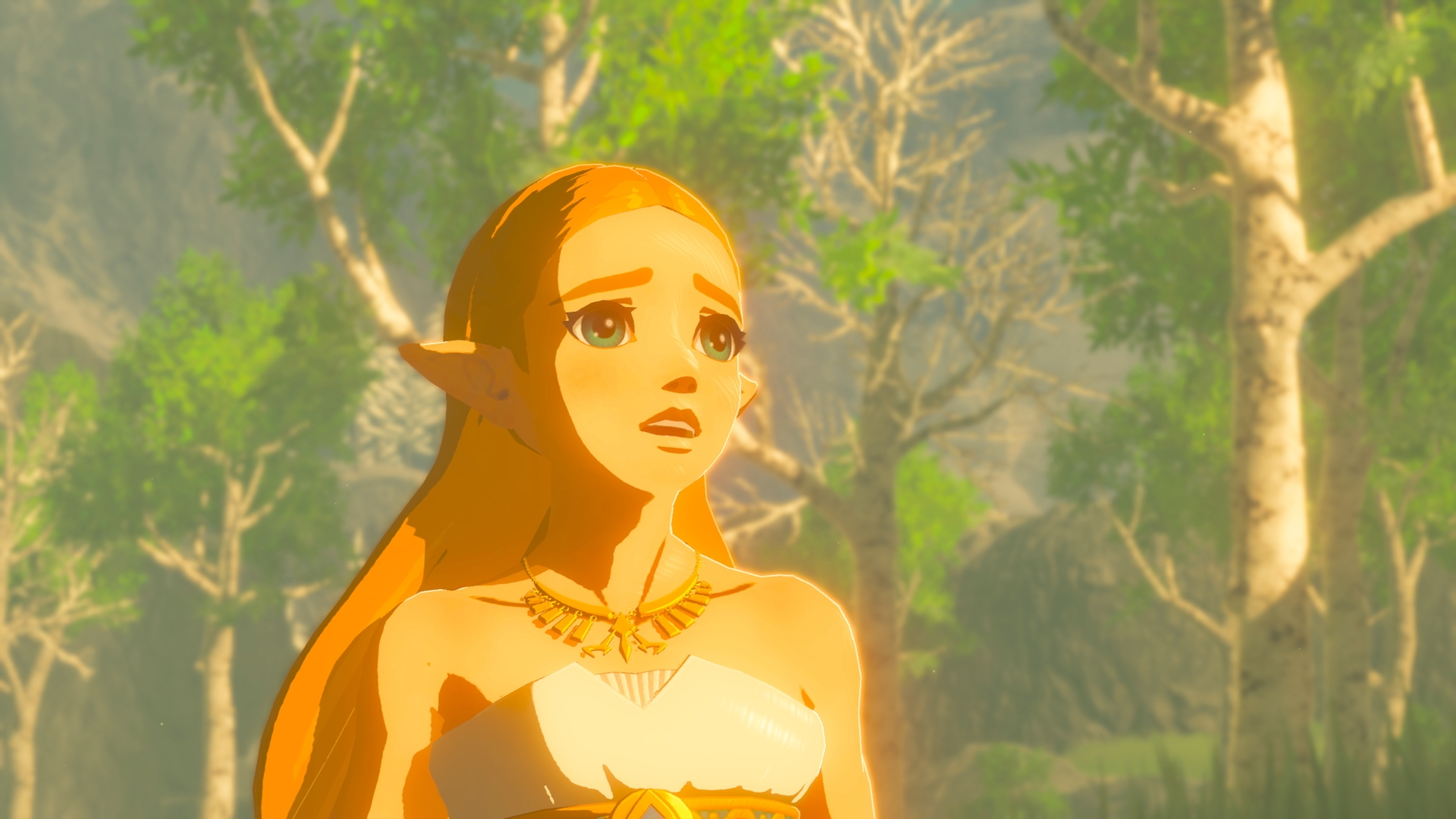 The Legend Of Zelda: Breath Of The Wild - open your eyes (and delete your browser history)