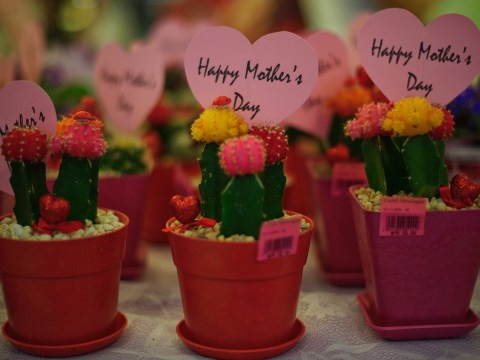 7 things you can do for Mother's Day for free in London
