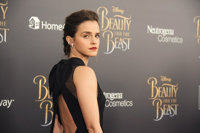 Emma Watson says avoiding social media comments helps her retain a sense of sanity (Picture: WireImage)