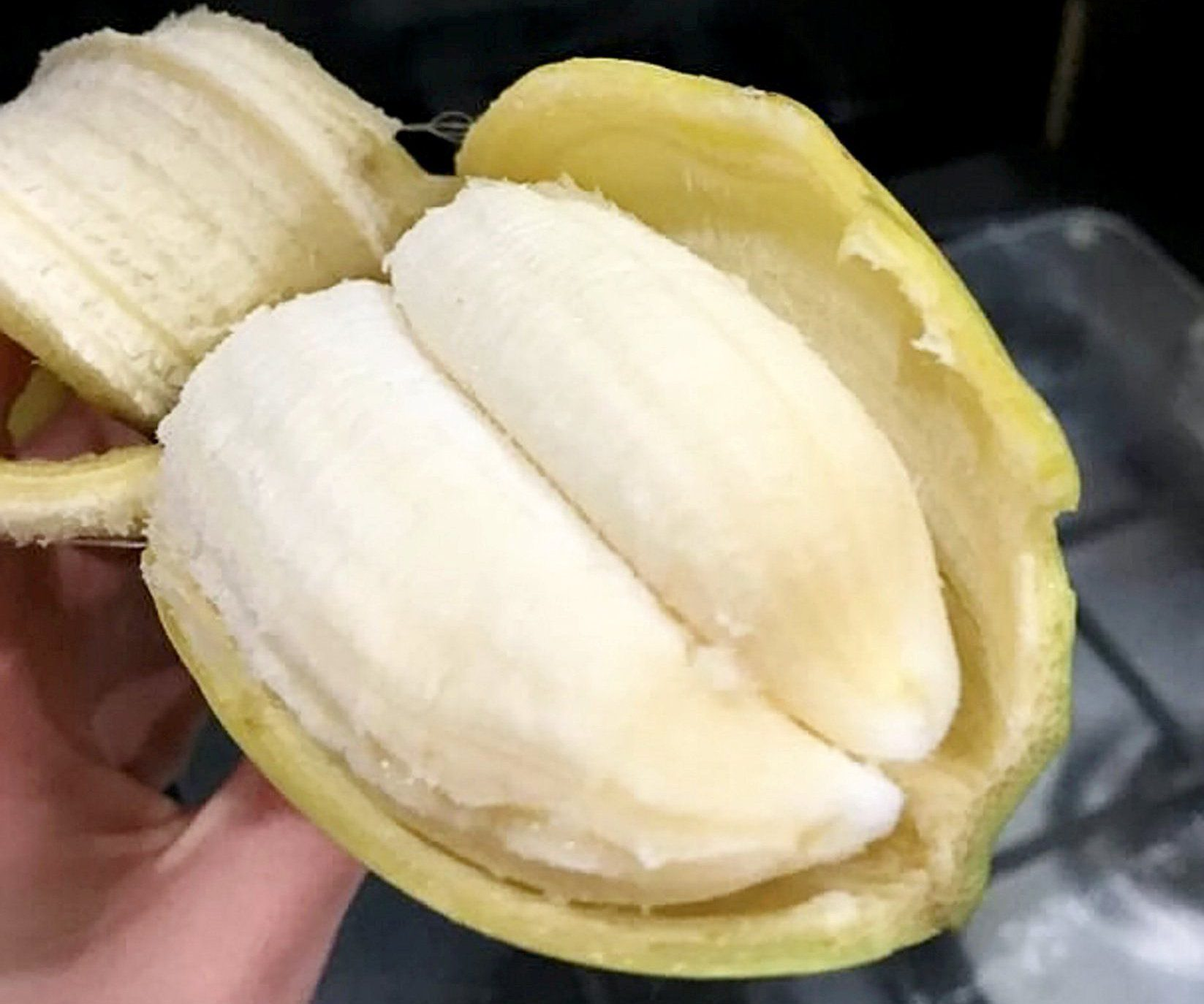 A dad was stunned when he bought a bunch of bananas ñ and found two in a single skin. See NTI story NTINANA. Richard Preece, 33, discovered the rare ëdouble bananaí after he unloaded his weekly shop from Asda. Coincidentally, the dad-of-three has taken part in several charity fun runs dressed as cartoon character Bananaman. Pub manager Richard spotted the double banana after Asda delivered an online shop to his home in Hinton, Hereford, on Monday (13/3) night.