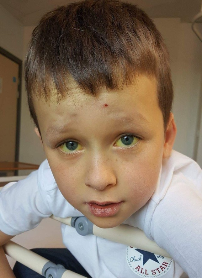 CASCADE NEWS PIX - PIC shows Jay Dalrymple, a 10-year-old boy who is at the centre of an appeal for potential stem cell donors
