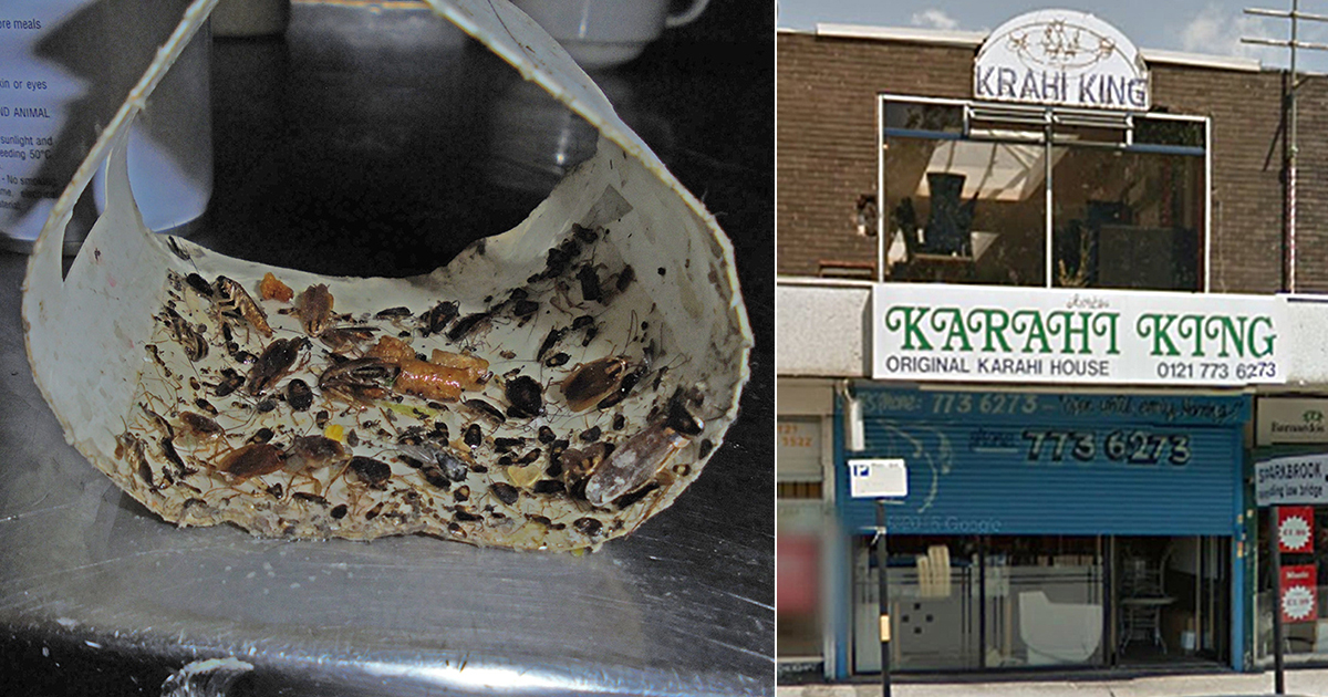 Cockroach-infested curry house fined £2,000 after mouse droppings found in fridge