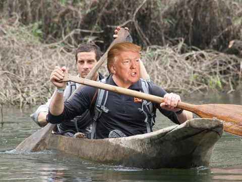 Bear Grylls wants a survival adventure with 'tenacious' Donald Trump