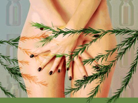 Don't put tea tree oil in your vagina