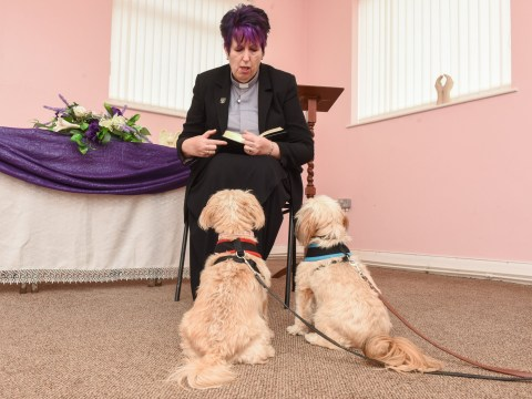 Meet the UK's first pet minister who'll pray for your animals – whatever they've done