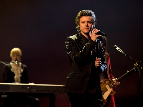 Harry Styles is NOT quitting music for Hollywood, despite the offers rolling in