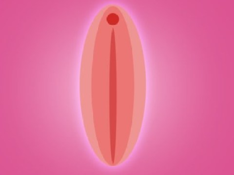 Why this woman is campaigning to open the world's first vagina museum