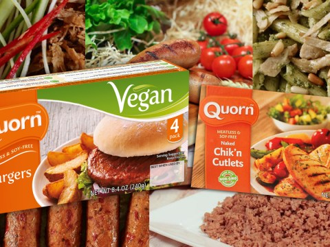25 vegan meat alternatives ranked from worst to best