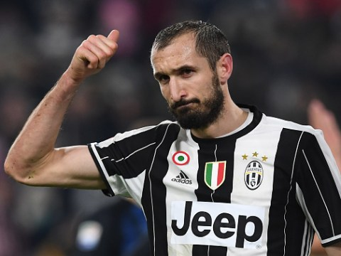 Giorgio Chiellini claims Zlatan Ibrahimovic is the best striker he's ever faced