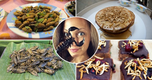 A health enthusiast is adding an unusual ingredient to her meals - insects.