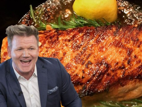 Gordon Ramsay shows the world that he can be nice as he bigs up a fan's cooking