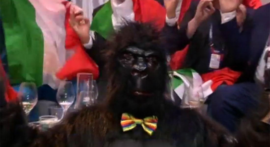Italy's dancing gorilla didn't even break character in the Eurovision green room
