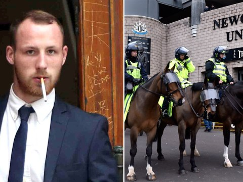Another football fan in Newcastle has 'punched a police horse'