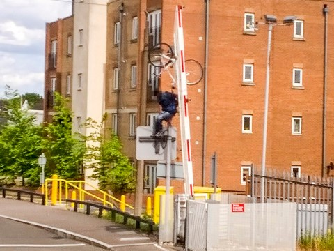 Impatient cyclist loses his bike up a lamp post