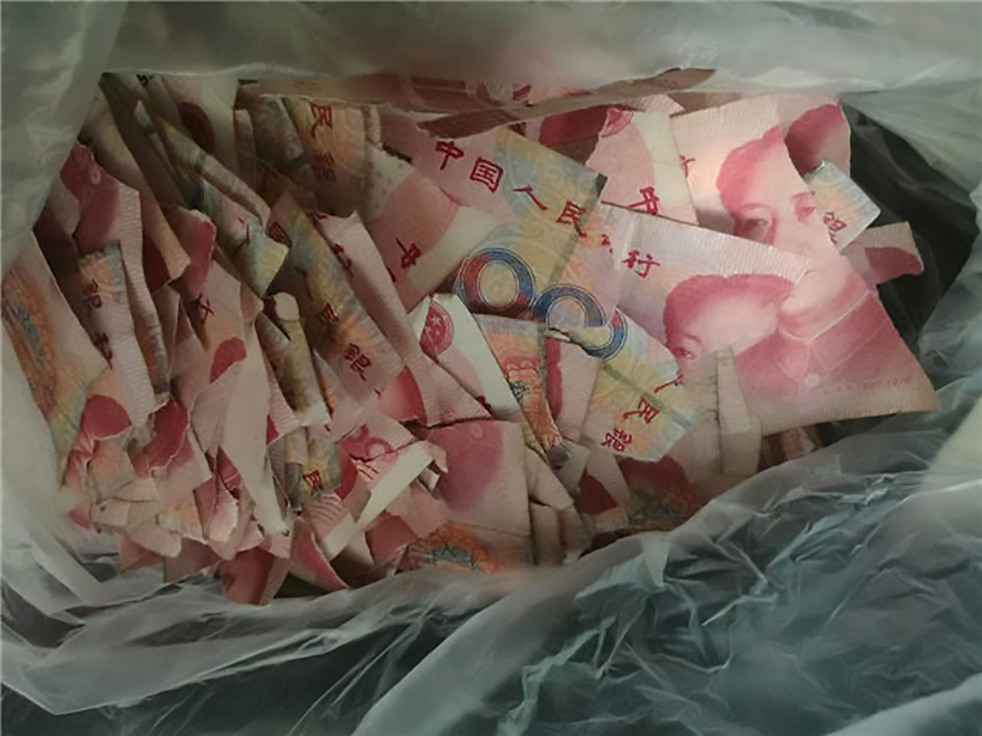 Father can't cash in £5,000 in ripped banknotes after son tore them to pieces