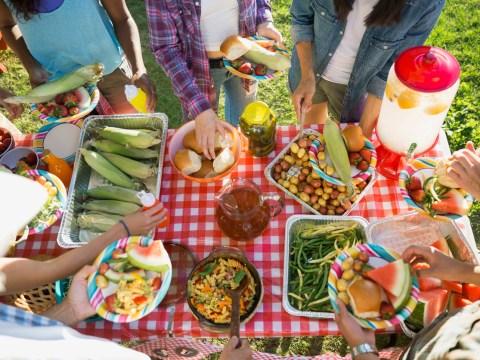 International Picnic Day: 15 things guaranteed to happen at every British picnic