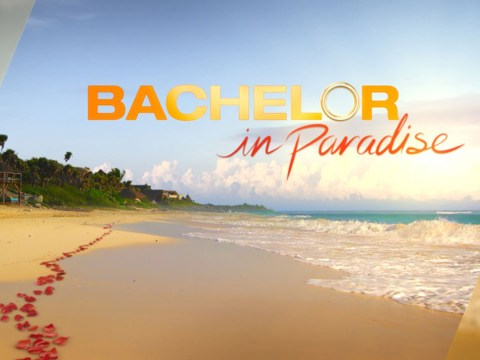 Bachelor In Paradise investigation concludes there was no sexual assault during production