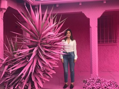 People are getting seriously annoyed by everyone coming into their neighbourhood to take pictures in front of pink houses