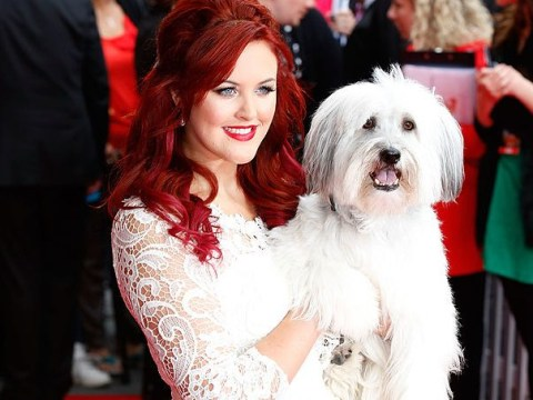 Britain's Got Talent champion Pudsey has sadly died