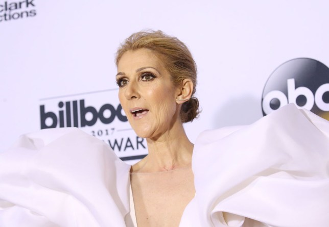 Celine Dion Poses Naked In New Revealing Photoshoot Metro News