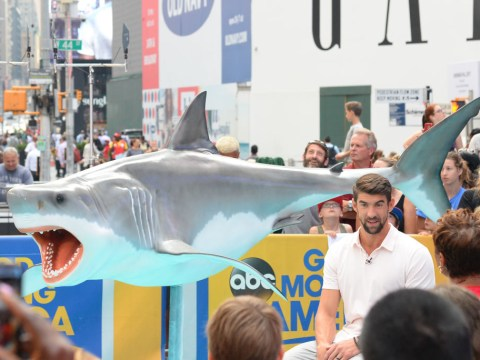 Michael Phelps calls for rematch after losing race against great white shark by two seconds