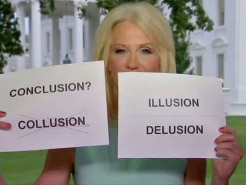 Kellyanne Conway gets ripped to shreds after using signs in bizarre Fox interview