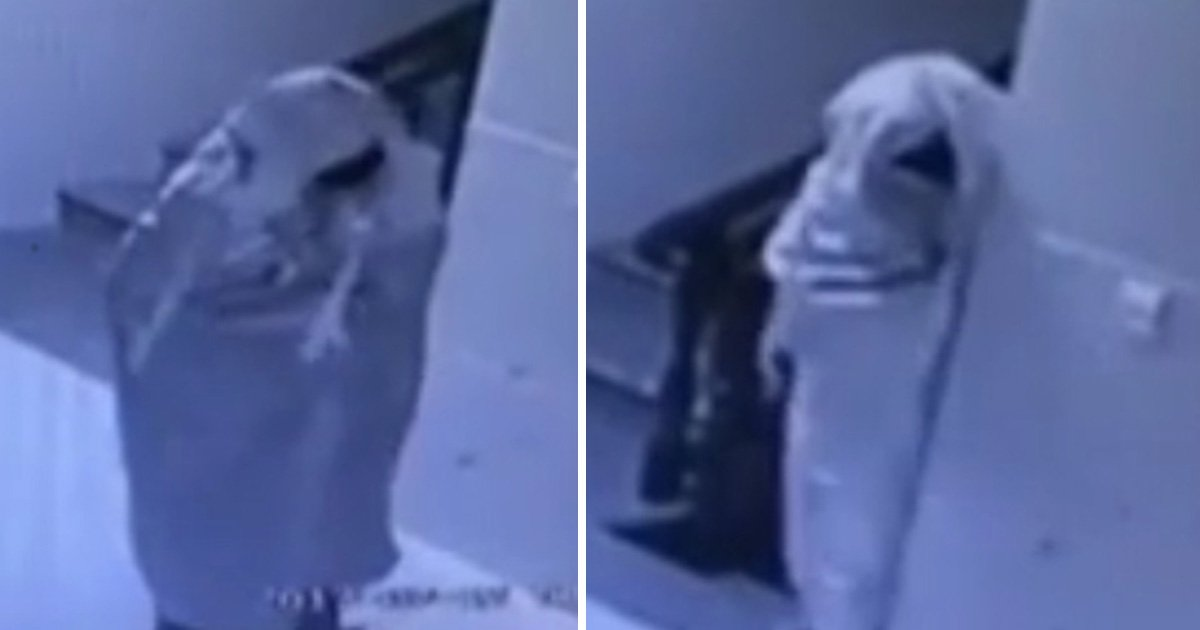 Thief dresses as ghost to try and avoid detection
