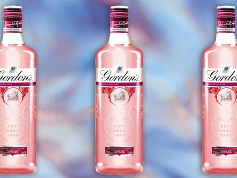 You can now get millennial pink gin to jazz up your tonic