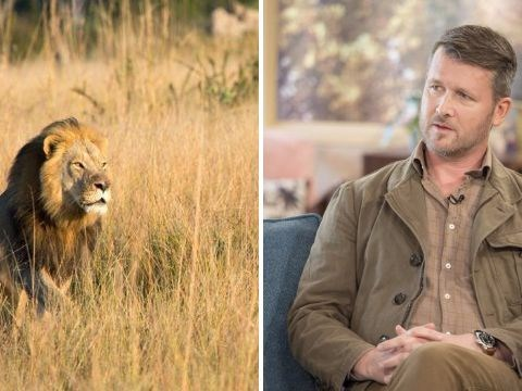 Hunter tries to justify killing lions like Cecil's son and people are livid
