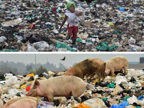 Using plastic bags in Kenya could land you four years in prison