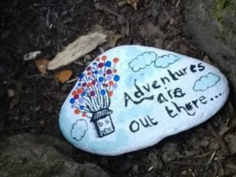 Move over fidget spinners, the latest craze is painting rocks