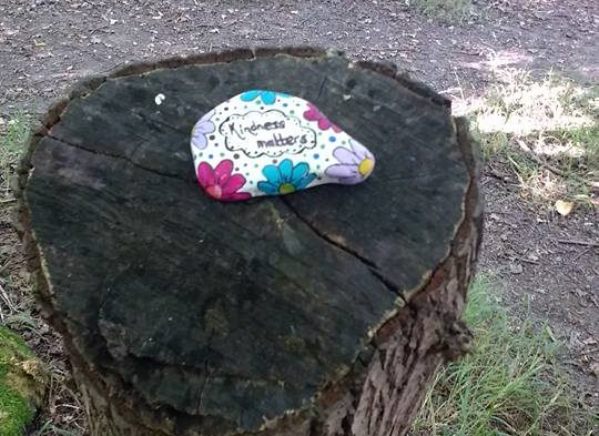 Goodbye fidget spinners, painting rocks is the new craze