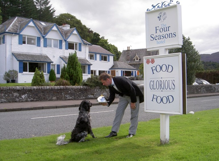 35 hotels around the UK where your dog can stay too | Metro News