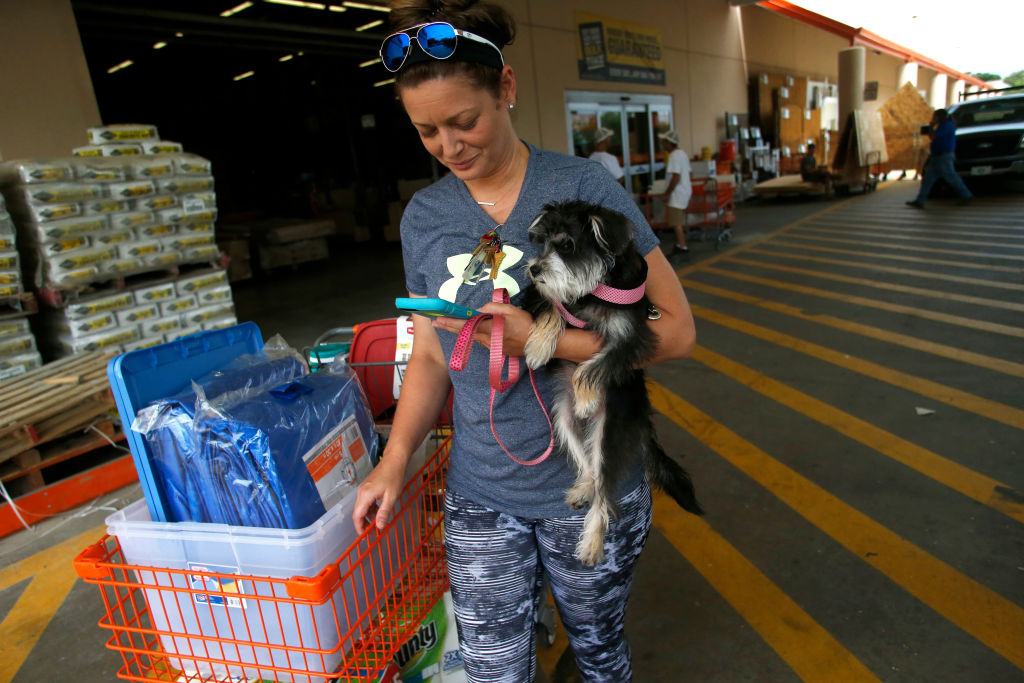 Shelters that accept pets in Florida during Hurricane Irma