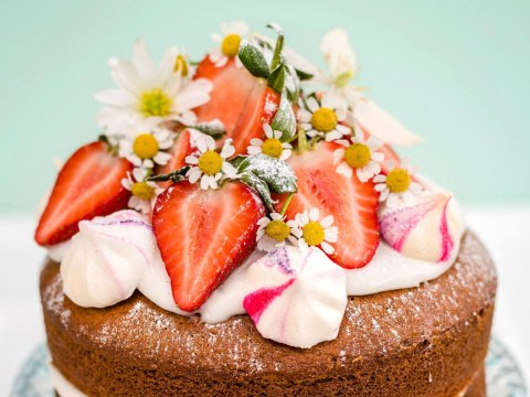 National Cake Week 2017: 10 stunning vegan cakes to bake today