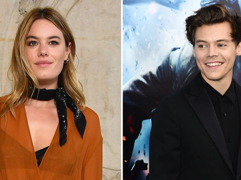 It's the Little Things: Harry Styles carries girlfriend Camille Rowe's bag as the pair enjoy dinner