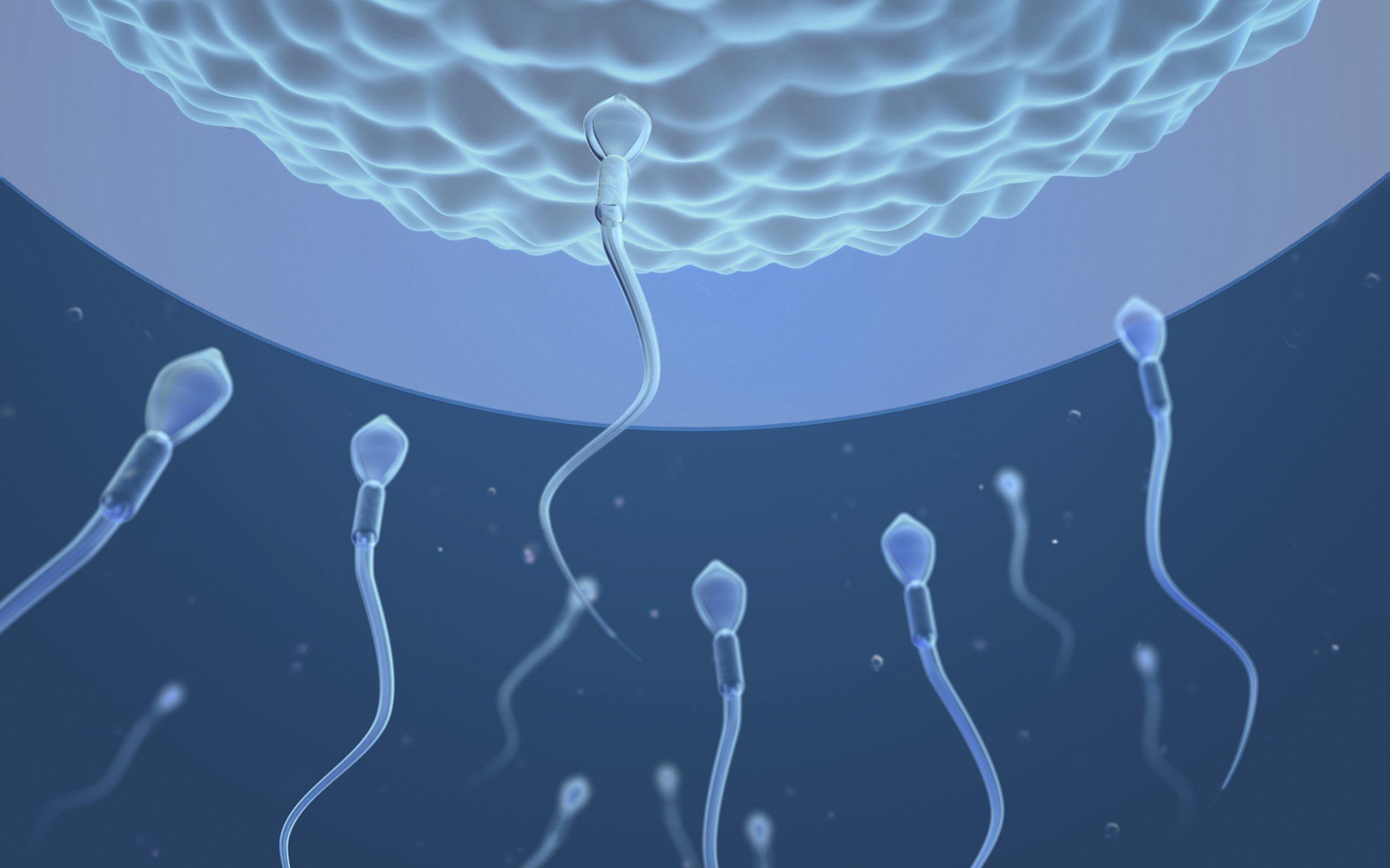 Smoking marijuana may be making your sperm lazy