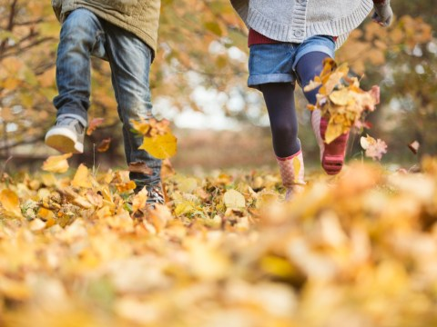 When is autumn? September equinox is tomorrow, but what does that mean?