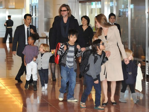Angelina Jolie's bid for sole custody against Brad Pitt may have backfired, top lawyer claims