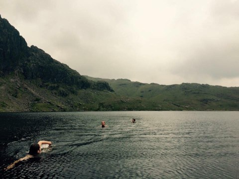 Cold water swimming: why the hell do so many people like doing it