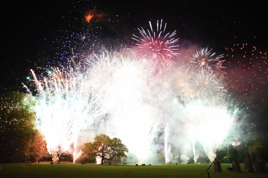 The 15 best fireworks displays in London this Bonfire Night