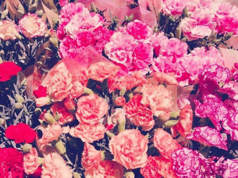 Carnations are the most underrated flowers that more brides should use for their bouquets