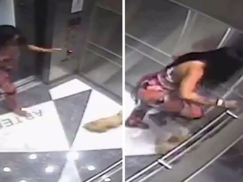 Woman filmed brutally stamping on tiny puppy in elevator