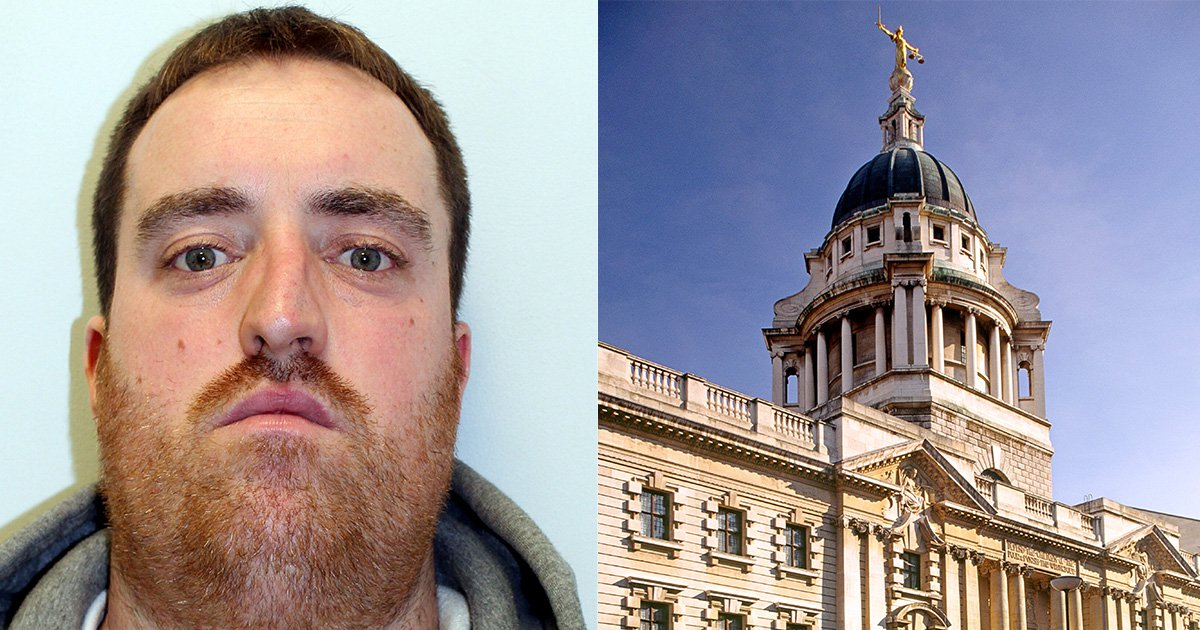 Hit and run driver who killed pensioner on zebra crossing jailed for just four years