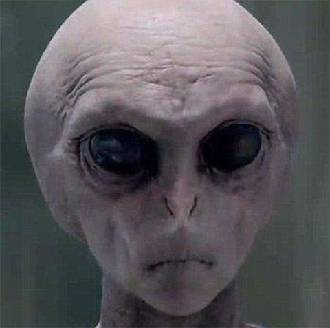 Police arrest 'time traveler from 2048' warning about alien invasion