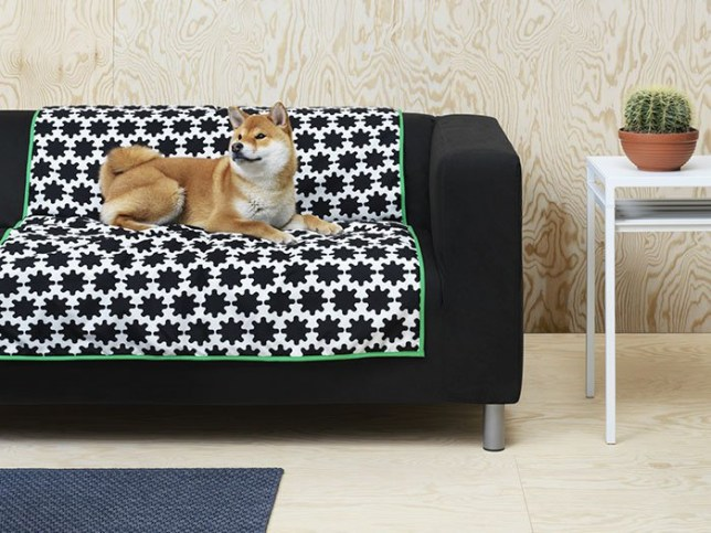 Ikea Is Now Doing Furniture For Pets So Get Your Cat And Dog Beds