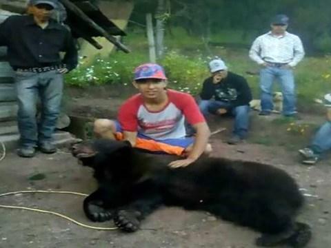 Activists enraged after group pose in trophy photo after killing black bear
